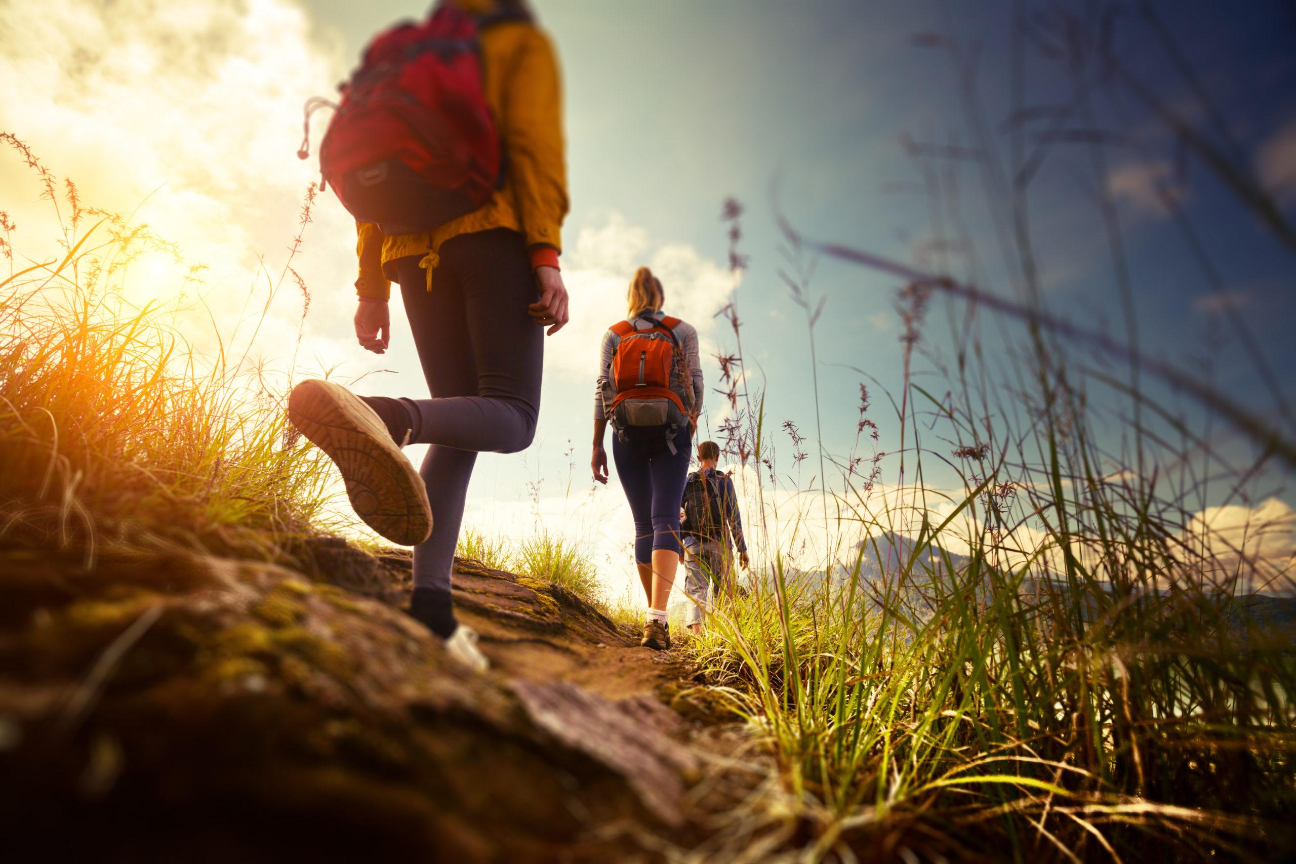 Top 4 Things to Do In Whitecourt Parallax